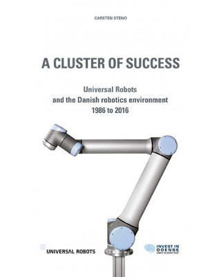 A Cluster of Succes - ebook
